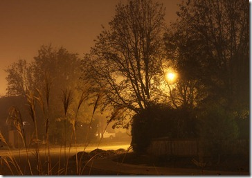 101211_nocturne5