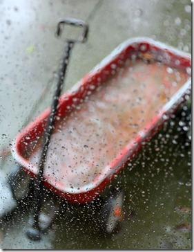 110217_rain_wagon