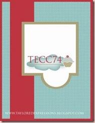 TECC74(sketch)