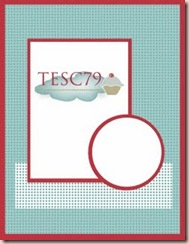 TESC79(sketch)