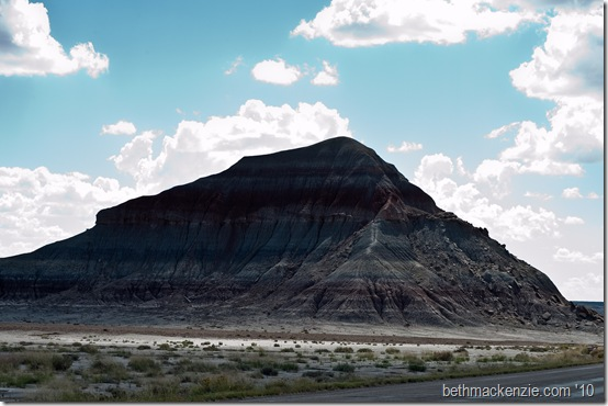 Petrified Forest-060