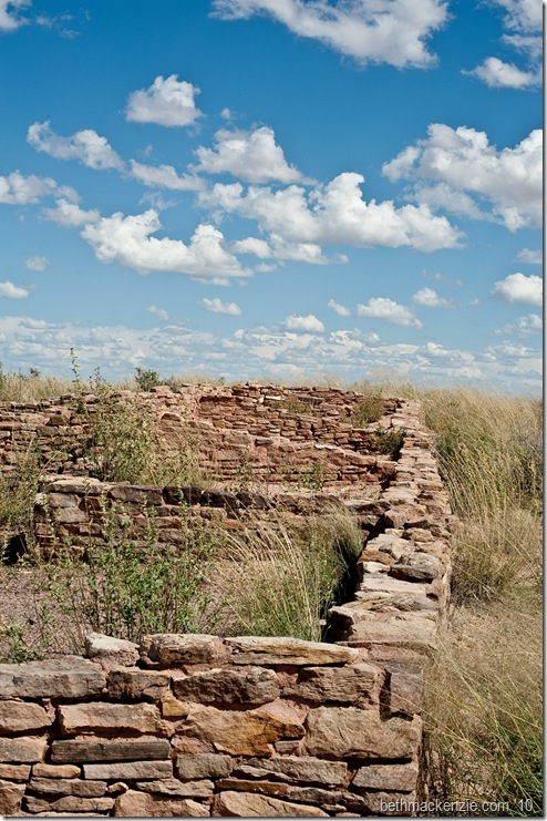 Petrified Forest-041