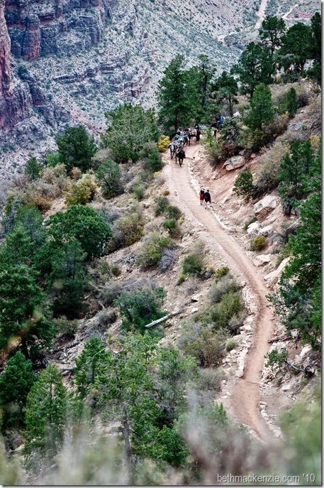 Grand Canyon-022