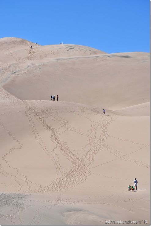 Sand Dunes-107
