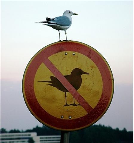 Neapšaubāma zīme