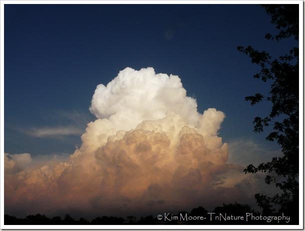 Cloud Closer