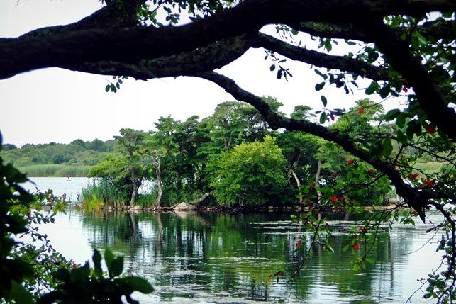 trustom pond (22)