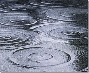 regn10
