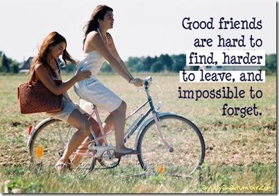 venskap