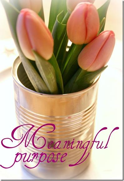 tulipan3