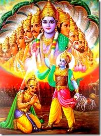Lord Krishna's universal form