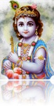 krishna_narrow