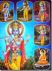 Krishna and His avataras
