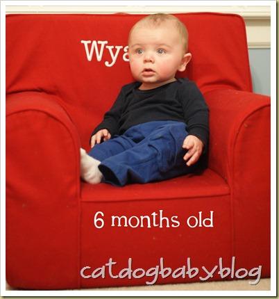 2011-01-07 Wyatt 6 months