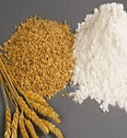 Wheat_Flour_d