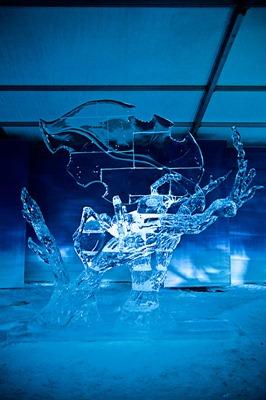 DSC_0749_ice