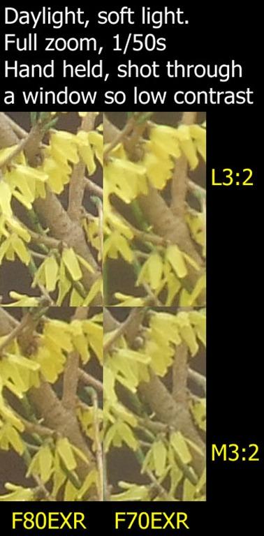 bush_compare[1]