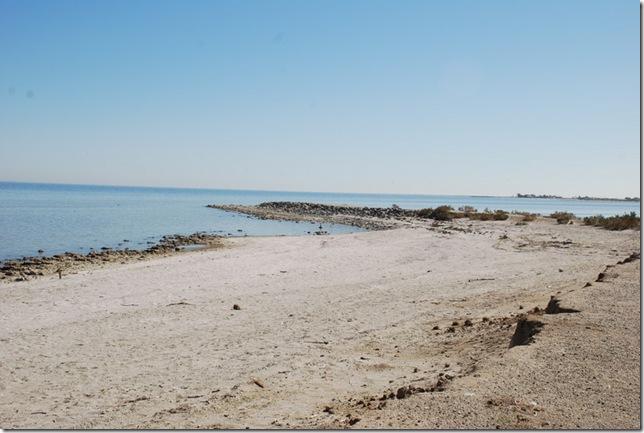 02-08-10 D Salton City Salton Sea 011
