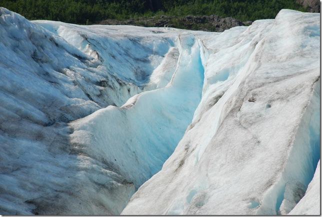 07-03-09 A Exit Glacier 019