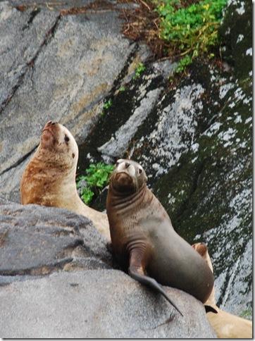 08-27-09 Trip to Juneau 042a