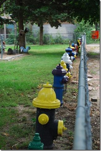 09-21-10 C Fire Hydrant Garden in Topeka 005