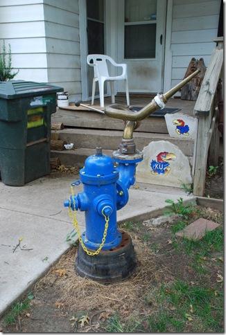 09-21-10 C Fire Hydrant Garden in Topeka 011