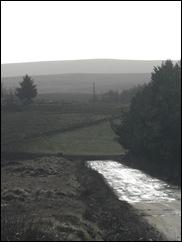 SDC11165
