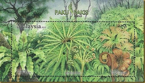 fern malayss