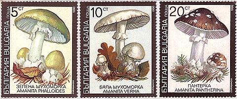 bulgaria1b