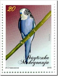 papag20
