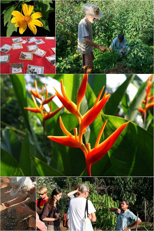 Auroville2