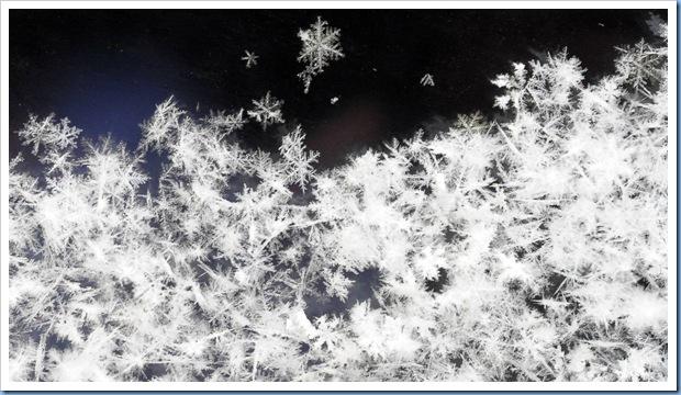 ss-101203-winter-02_ss_full