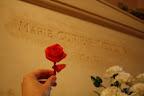 Uma rosa de guardanapo para Marie Curie no Panthéon
