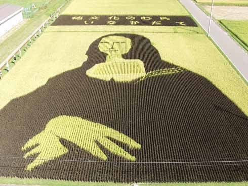 rice-paddy-art4