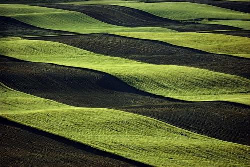 dryland_farming