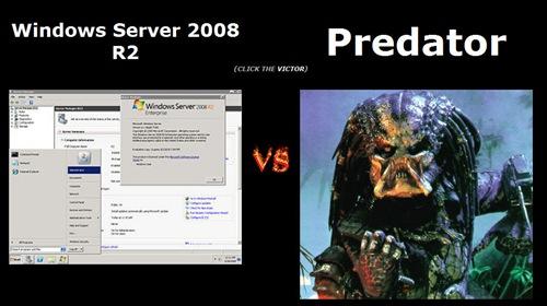 wiki-predator (4)