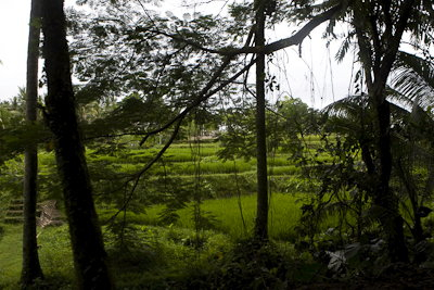 Bali0902012-2.S3ReZkKv2WUJ.jpg