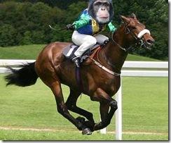 samba-on-horse1