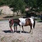 Coralie (jeune maman, galop 7), son fils Ilan et leur poney Nemo. Enceinte de 8 mois, Coralie laisse son poney tranquille au parc, mais recommencera a le monter et a le faire monter a son fils d'ici quelques mois. Nemo est un très bon poney d'obstacle et Coralie ne veut pas qu'il gâche son talent en ne faisant rien !