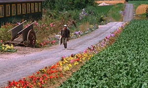 Dreams - Harvest at La Crau