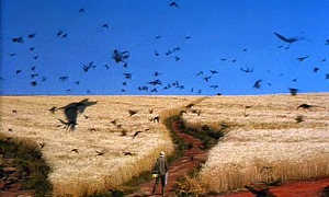 Dreams - Wheat Field with Crows