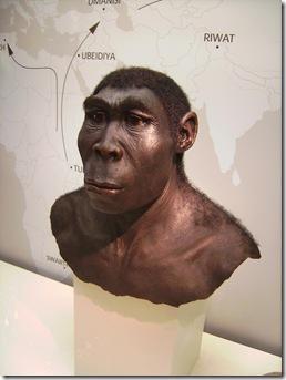 Reconstrução artística do Homo erectus em Westfälisches Museum für Archäologie na cidade de Herne, na Alemanha.