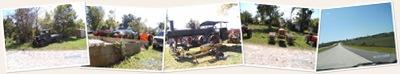 View Trip to the Fair Grove Festival