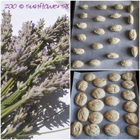 Biscotti alla lavanda PrePost