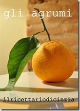 banner arancia cinzia
