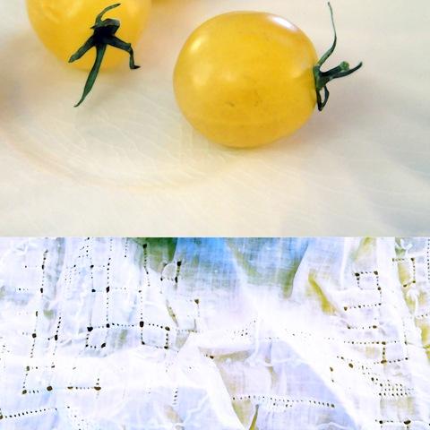 cherry tomato copy