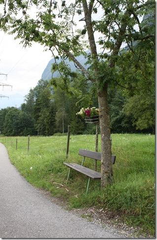 day 5 wissenbach falls (27)