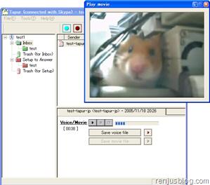 tapur skype screen capture