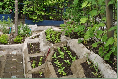 terrassen i köksträdgården