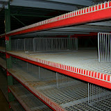 Used Wire Decking with Dividers